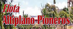 FLOTA ALTIPLANO PIONEROS