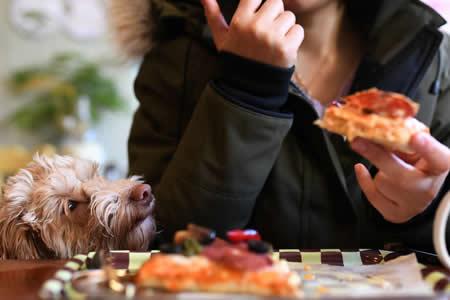 ¿Es más sano desayunar pizza que un plato de cereales?