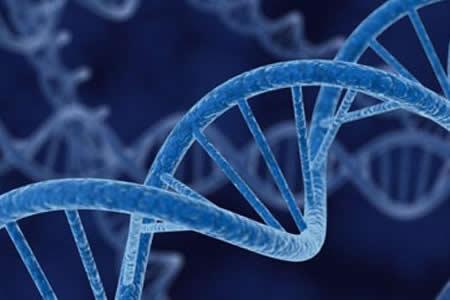 Bloquear una proteína podría ser útil en infecciones, alzhéimer o metástasis