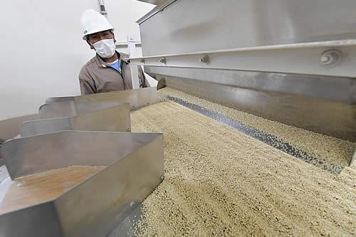 Bolivia exportará 40 toneladas de quinua a China por el puerto de Ilo: Morales
