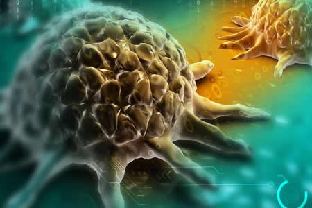 El cáncer podría estar relacionado con el envejecimiento del sistema inmune