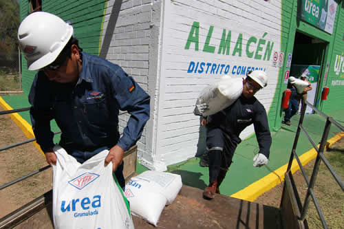 Bolivia apuesta por el fertilizante urea en una de sus viñas más emblemáticas