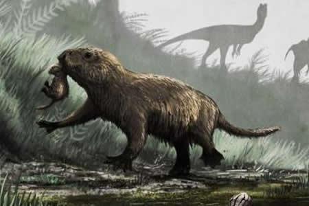 Los mamíferos se volvieron diurnos tras la extinción de los dinosaurios