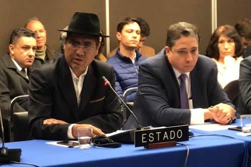 """La CIDH pide """"tiempo"""" para posicionarse sobre reelección de Evo Morales"""