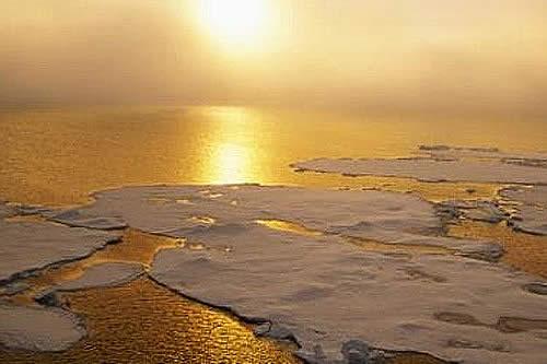 5 cosas que puedes hacer para evitar calentamiento global