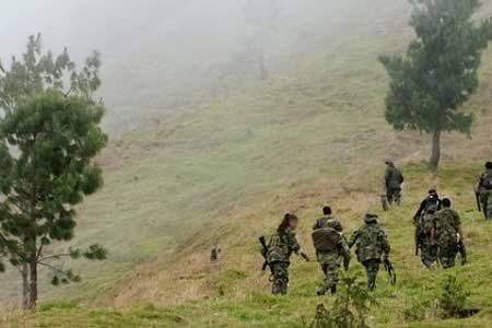 Estudiarán biodiversidad en zona colombiana donde FARC tenía fuerte presencia