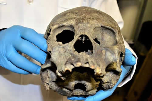 Reconstruyen en Bolivia cráneos de cultura que habitó el país hace 3.000 años