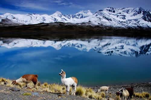 Ministerio de Culturas destaca que cinco elementos hacen de Bolivia el mejor destino cultural