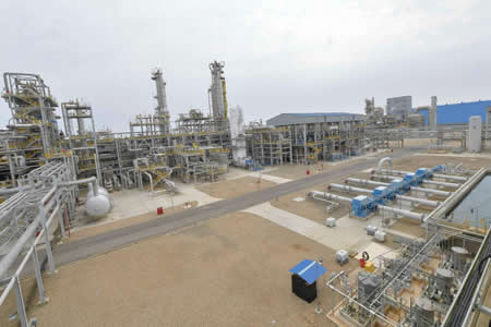 Legisladores de oposición solicitan a YPFB realizar una inspección a la planta de Bulo Bulo