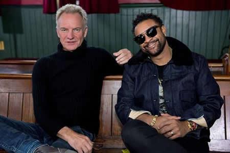 """Sting: """"Creo que el reggae forma parte de mi ADN"""""""