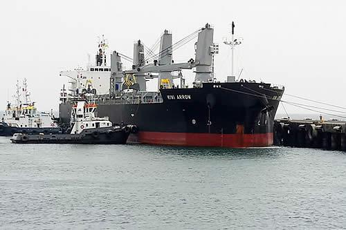 Morales prevé viajar al puerto de Ilo a recibir 11.000 Tn de carga boliviana