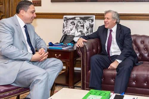 Tuto celebra que Arce acuda a la OEA por repostulación