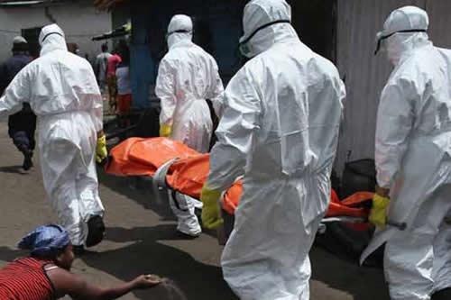 Suben a 114 los muertos en 2018 por el peor brote de fiebre Lassa en Nigeria