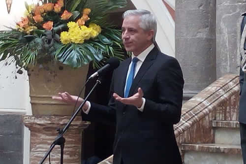 García Linera: Denuncia de Mesa es un señuelo para despistar error