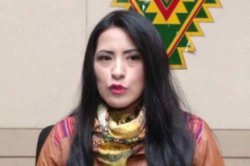 Alanoca dice a oposición que no se meta con los artistas