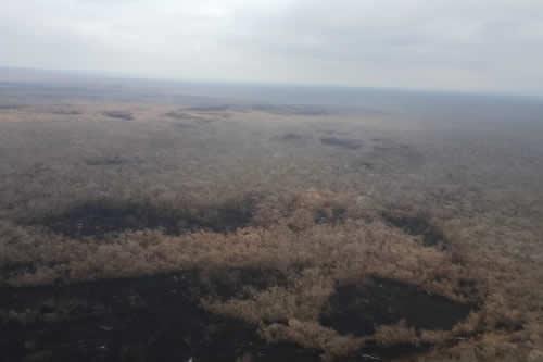 Defensa Civil: Lluvia sofocó 90% del incendio forestal de San José de Chiquitos