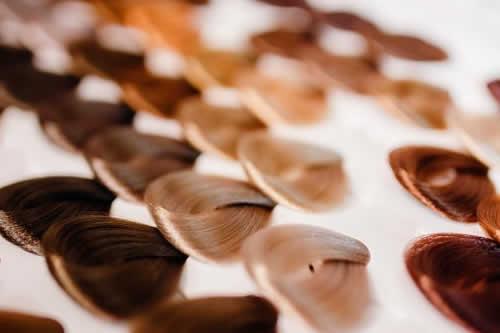 Un estudio identifica más de cien genes que determinan el color del pelo