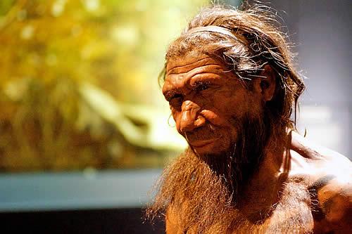 Ingenieros genéticos 'resucitarán' el cerebro de los neandertales a partir de células humanas