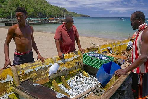 Microseguros contra el temporal en el Caribe