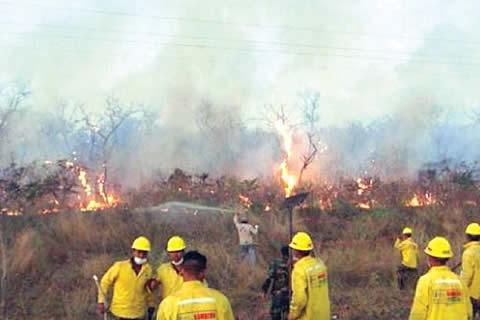 Morales instruye al Ministro de Defensa ir a Santa Cruz para coordinar acciones contra los incendios