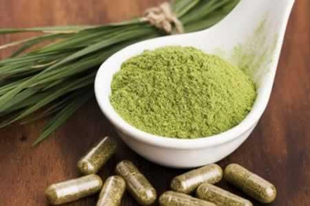 """DEA prohíbe productos con kratom, una planta """"tan peligrosa"""" como la heroína"""
