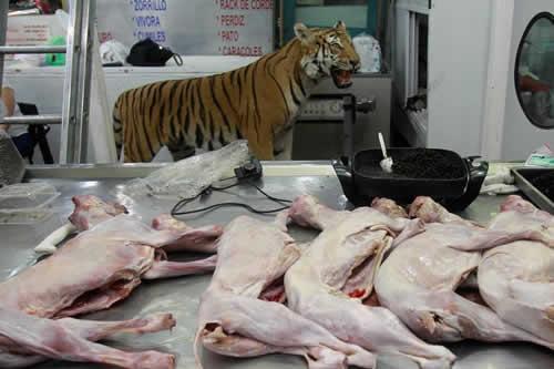 Consumo de carne no convencional ayuda a conservar su especie animal