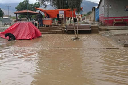 Bolivia recibe $us 5.000 del Parlamento Andino para damnificados por lluvias