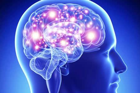 Líquido de tejido cerebral muerto después de un ataque es tóxico y dañino