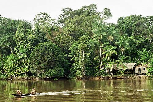 Países amazónicos se reúnen para implementar convenio para la conservación de la selva