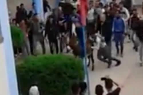 Un alumno marroquí aparece con un asno en instituto en respuesta a profesor
