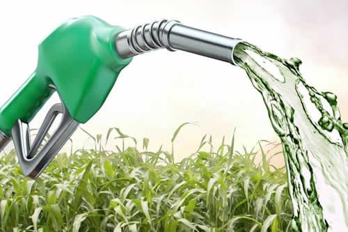Bolivia se mira en el espejo de Brasil para aumentar los biocombustibles