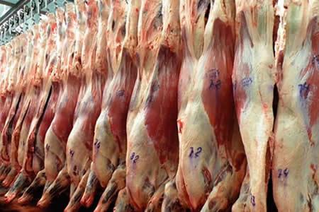 Nuevo directorio de Ganaderos de Santa Cruz priorizará la exportación de carne