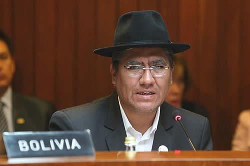 """Bolivia impulsará la """"marca andina"""" y el uso de tecnologías desde presidencia pro témpore de la CAN: Pary"""