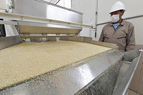 Valor de exportaciones de quinua boliviana cierra con $us 100 millones en 2018