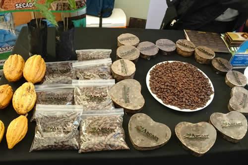 Bolivia busca posicionar su cacao por su calidad y producción ecológica