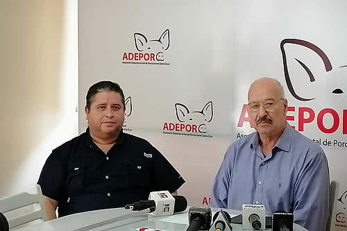 Porcinocultores de Santa Cruz: 20% de las granjas desaparecieron del mercado