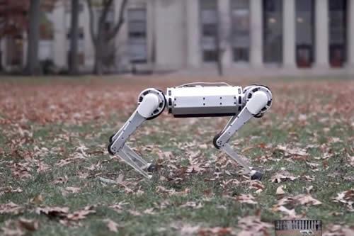 Presentan el nuevo Mini Cheetah, un robot capaz de trotar más rápido que un hombre y de hacer volteretas