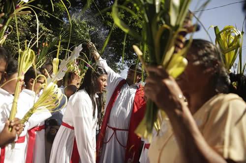 Canciones, bailes y hojas de palma adornaron el Domingo de Ramos en Jerusalén