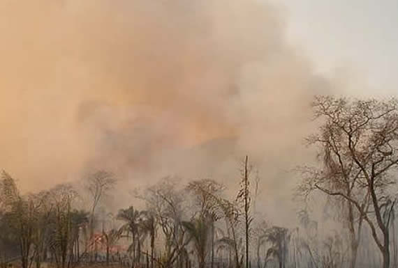 """""""Gabinete Ambiental"""" dispondrá recursos necesarios para mitigar incendios en la Chiquitanía"""