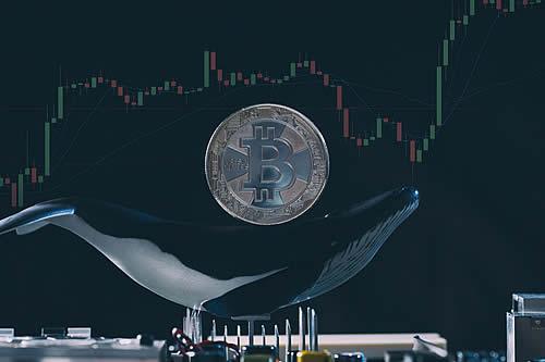 Un inversor 'ballena' compra unos 30.000 bitcoines