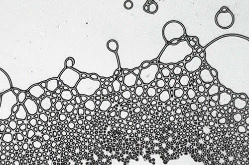 """Casi imposible en la naturaleza"": Un grupo de físicos crea gotas cuadradas usando campos eléctricos"