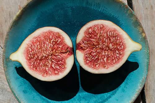 Diabetes: la fruta que puede reducir el azúcar en sangre en minutos