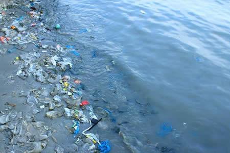 """Micropartículas de plástico son 30 % de las """"sopas"""" de basura en los mares"""