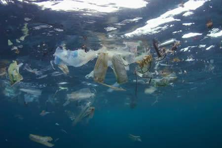 ONU: Los mares de Centroamérica son los que más basura tienen del continente