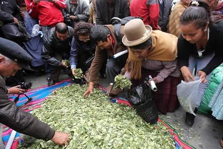 The Guardian: Bolivia sueña con vender coca, el mundo solo ve cocaína