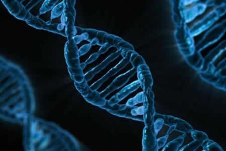 Dibujan el mapa del genoma del cáncer de vejiga y describen 5 nuevos subtipos