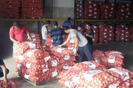 Prohibirán importación de cebolla, tomate, ajo y papa desde diciembre