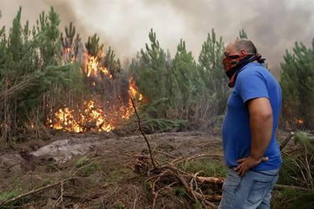 Aumentan a 43 los muertos en los incendios de Portugal