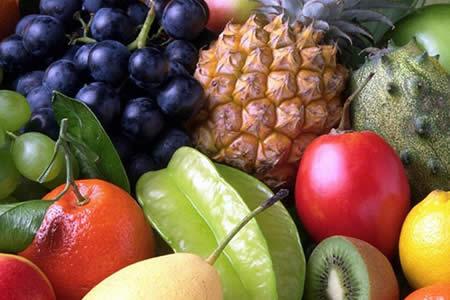Bolivia quiere exportar frutas y carne de llama a Rusia