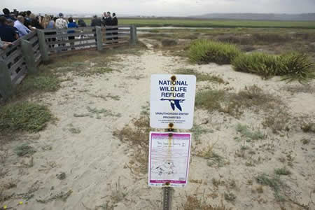 Anuncian acción legal para frenar flujo de aguas negras desde México a EE.UU.